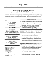 Non Profit Executive   Free Resume Samples   Blue Sky Resumes Write A Good Cover Letter Sample Executive Director Non Profit Always Use A  Convincing Covering With
