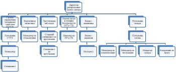 Анализ деятельности компании Пятерочка и Северо Западного  Каждый распределительный центр Северо Западного Дивизиона характеризуется поддерживаемыми температурными режимами и номенклатурой товаров