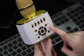 Micro Karaoke iCore IC-M99 - Mic kèm loa Bluetooth, Livestream