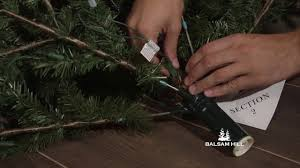 Balsam Hill Light String Out How To Fix An Unlit Section On Your Easy Plug Tree