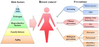 Cancer Risk By Age Chart Schematic Diagram Of Risk Factors And Preventions Of Breast