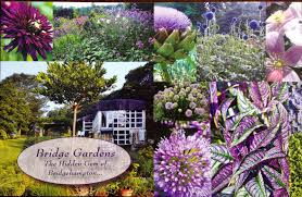 celebrate local food at this community potluck dinner in partnership with bridge gardens part of the peconic land trust garden manager rick bogusch will