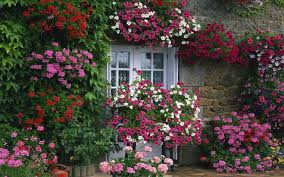 english garden flowers. Flower Garden House With A Ideas At Collection Images Wonderful Layouts Summer . Around English Flowers