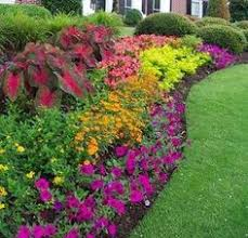 Small Picture Invisible Flower Bed Borders for Natural and Beautiful Garden