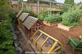 Small Picture Small Organic Garden CoriMatt Garden