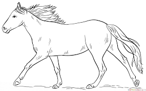 Small Picture How to draw a running horse Step by step Drawing tutorials
