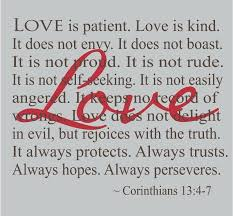 Love Is Patient Quote Extraordinary Corinthians Love Is Patient Decal Wedding Decorations Wall Words
