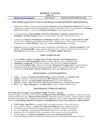 randal davis resume new home sales realtor resume example