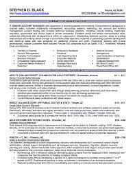 Enterprise Rent A Car Resume Sample Executive Manager At Enterprise Rent A Car Job Description Perfect 23