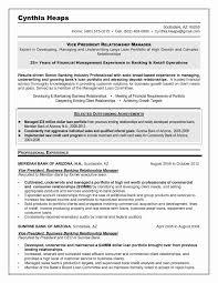 Free Download Transportation Operations Manager Sample Resume