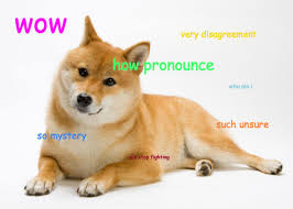 dodge dog breed. Brilliant Breed Pronounce_doge4 For Dodge Dog Breed