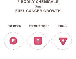 Breast Cancer Growth Rate Chart Growth Of Cancer National Breast Cancer Foundation
