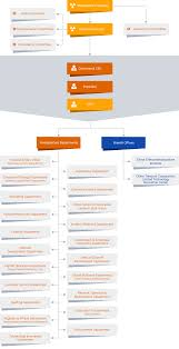 Company Org Chart China Telecom Corporation Limited Company Organization Chart