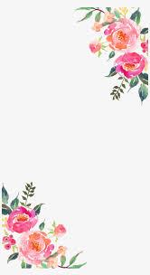 transpa corner flower design