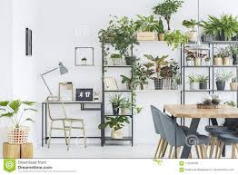 indoor home office plants royalty. Floral Home Office Interior. Royalty-Free Stock Photo Indoor Plants Royalty O