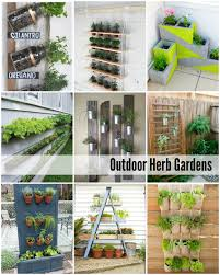 Small Picture Herb Garden Ideas Make An Herbal Knot T In Inspiration