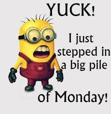 Good Morning Monday Photos In Funny 24 Best Happy Monday Images On Pinterest Mondays Good 3