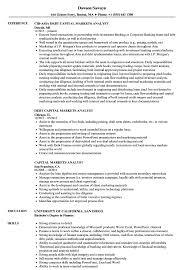 Bioinformatics Analyst Resume Sample Capital Markets Analyst Resume Samples Velvet Jobs 24