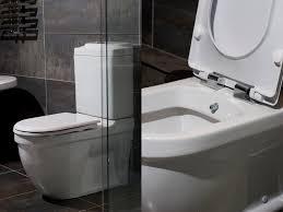 Toilet And Bidet Combo Custom Bidet Toilet Combo Roselawnlutheran Design  Decoration