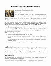 Salon Business Plan Template Free Best Business Plan Executive