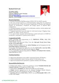 Student Resume Template. Best Summer Jobs For College Students ...