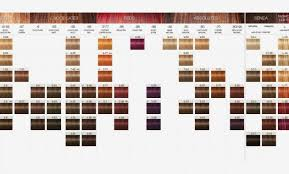 33 Abiding Igora Royal Color Chart Pdf