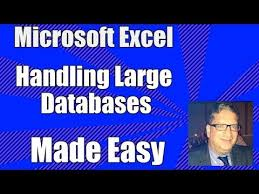 Excel Database Part 1 How To Use Excel As A Database Excel 2010