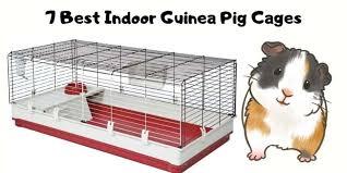 7 best indoor guinea pig cages hutch