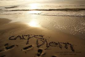 carpe diem written in the sand photography brown mocha beach eth159148142zoom