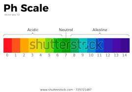 Blank Ph Chart Ph Scale Diagram Blank Ph Scale Diagram Chemistry Ph Scale