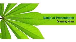 Fresh Green Plant Leaves Powerpoint Templates Fresh Green Plant