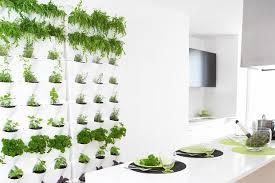 indoor kitchen garden. Indoor Kitchen Garden Great Gardening Easy Grow H