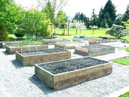 full size of garden patch grow box vs build boxes image for building a reviews life garden patch grow box