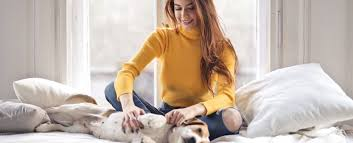 Image result for Pros and Cons of Tenants with Pets