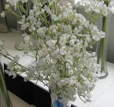 wedding bouquets gypsophila