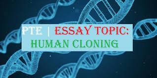 essay topic the role of human cloning has accelerated rapidly  essay topic the role of human cloning has accelerated rapidly