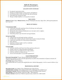 Resume Examples In Word Format With Leadership Skills Resume Example