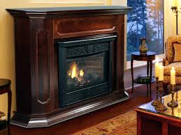 natural gas fireplace insert heaters heater with er unit extravagant inserts fake heat n glo