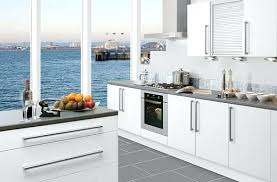 Kitchen Cabinet Doors White Thermofoil Gloss Shaker How To