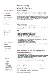 Marketing Experience Resume Marketing Executive Resume Sales Example Sample Template
