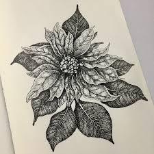 Poinsettia Pen Ink In 2019 Ink Pen Drawings Drawings Ink