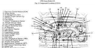 1992 isuzu pickup motor diagram wiring diagram option