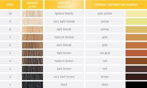 Wella Toner For Orange Hair Chart 28 Albums Of T28 Toner On Orange Hair Explore Thousands