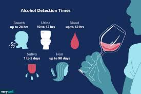 how long alcohol stays in your system