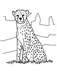 Fujio which later became an anime series and franchise. Cheetah In The Zoo Coloring Page Netart
