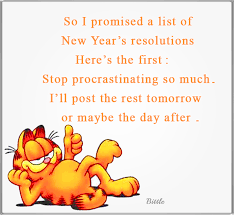 New Year Resolution Quotes Magnificent Funny Garfield New Years Resolution Quote Pictures Photos And