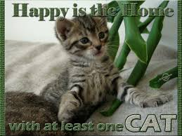 Cat Quotes Mesmerizing Happy Is The Home With At Least One Cat