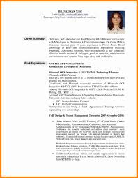 Examples Of Career Summary Resume Career Summary Examples Examples of Resumes professional 1