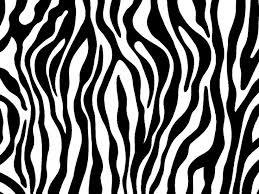 Small Picture Zebra Print Free Download