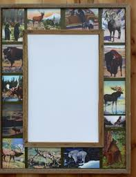 collage mirror wildlife